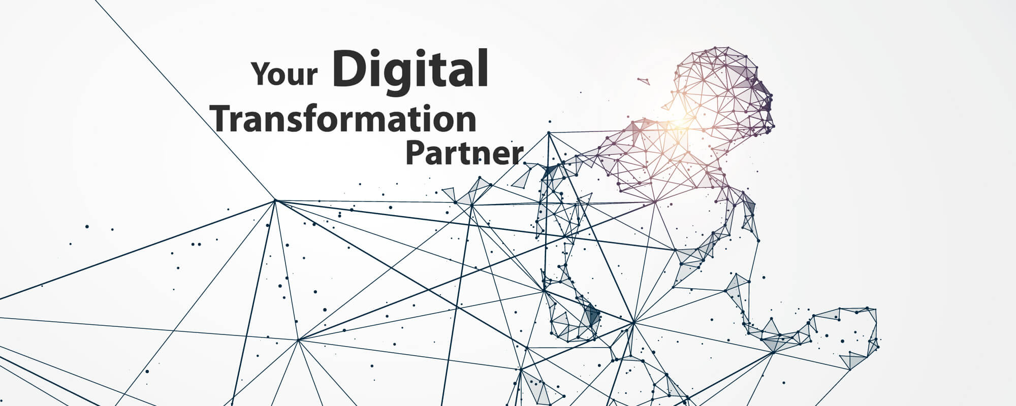 Digital Transformation Partner